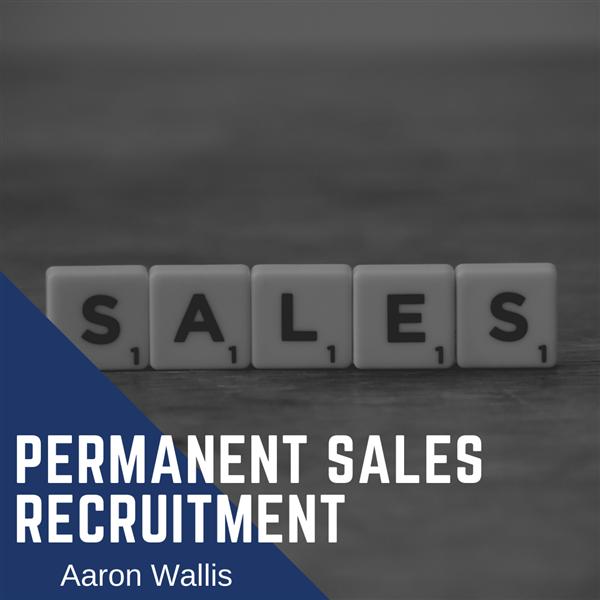 Sales Recruitment Services